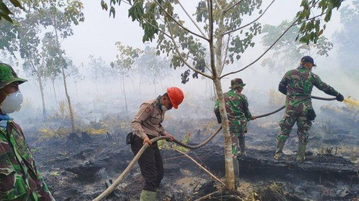 Api Karhutla di Desa Sungai Pelang Mulai Padam