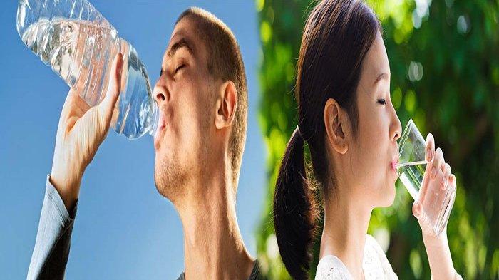 POSISI Cara Minum Seperti Ini Bisa Merusak Ginjal dan Organ Tubuh yang Lain