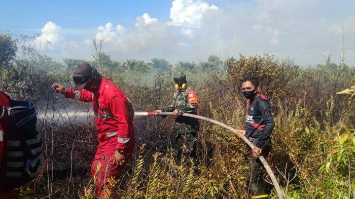 PRCPB Koramil Matan Hilir Utara bersama Tim Gabungan Saat Berusaha Memadamkan Api di lahan Gambut, Desa Tempurukan, Kecamatan Muara Pawan.