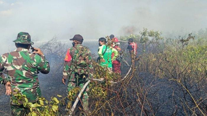 Kesigapan PRCPB Koramil Matan Hilir Utara Bersama Stakeholder Atasi Karhutla di Lahan Gambut