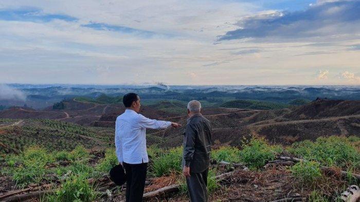 Gubernur Kaltim Akan Hentikan Pembangunan Ibu Kota Baru yang Digagas Jokowi Jika Merusak Lingkungan