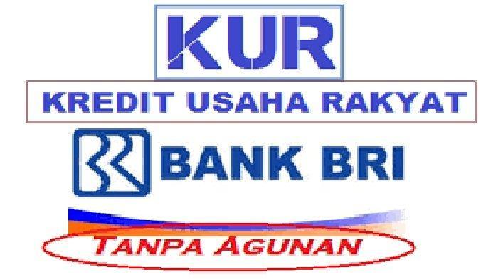 Proses Cair Pinjaman KUR https://pinjaman.bri.co.id/pengajuan/form/tracking Cek Pengajuan Pinjaman