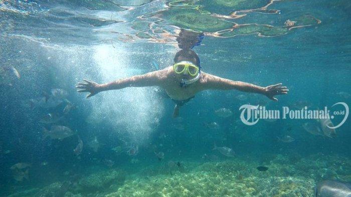 Sauwandarek Dan Yenbuba Destinasi Alam Bawah Laut Raja Ampat Tribun Pontianak