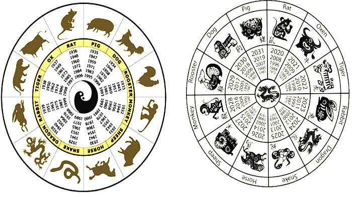 RAMALAN SHIO Anjing, Baik dan Buruk Orang Kelahiran Tahun Anjing! Dia Bukan Pemarah Jujur dan Cerdas