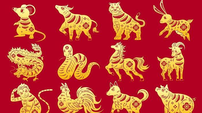 Ramalan Shio Minggu 19 Januari, Tikus Hadapi Masa Sulit, Naga Dikagumi