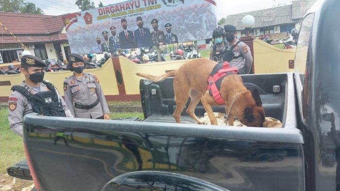 Polisi menerjunkan anjing pelacak (K9) untuk memeriksan setiap kendaraan yang melintas di depan Mako Polres Bengkayang baik dari maupun menuju perbatasan negara, Rabu 6 Oktober 2021.