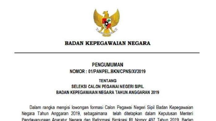 UPDATE CPNS 2019 - BKN Umumkan 84 Formasi Jelang Pendaftaran 11 November, Ini Rincian & Syaratnya