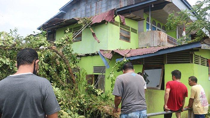 Cuaca Ekstrem dan Kecepatan Angin Tinggi, Kepala BPBD Imbau Warga Waspada Pohon Tumbang