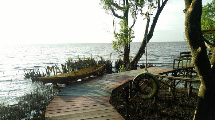 Wisata Mangrove Sungai Kupah Makin Cantik