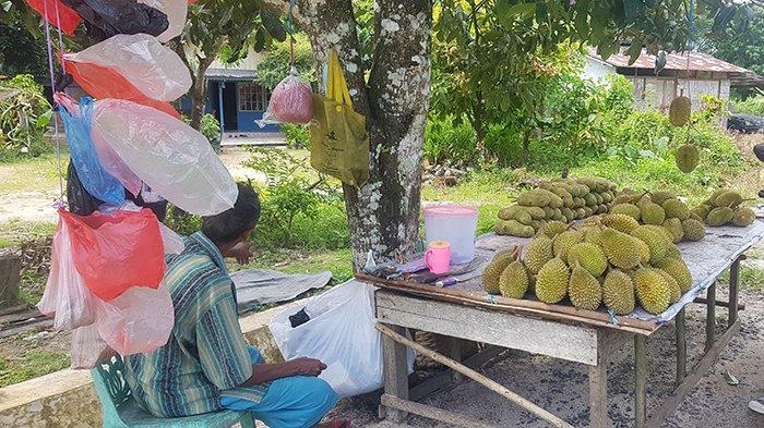 Musim Durian di Kayong Utara, Para Pedagang Mulai Berjualan di Pinggir Jalan