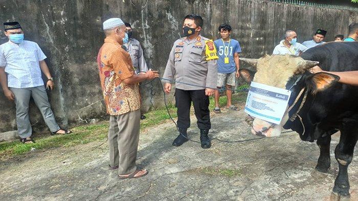 Polres Ketapang Potong Tujuh Hewan Kurban, Bagikan Daging Kurban 'Door to Door'