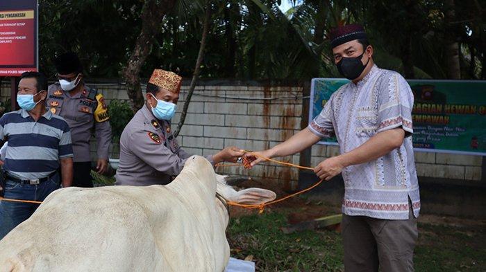 Rayakan Idul Adha 1442 H, Polres Mempawah Lakukan Pemotongan Hewan Kurban