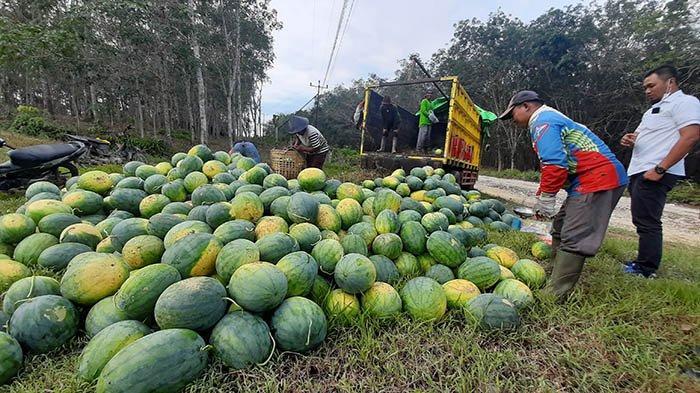 Kabar Baik! Tak Ada Lagi Status Desa Sangat Tertinggal di Kabupaten Sintang
