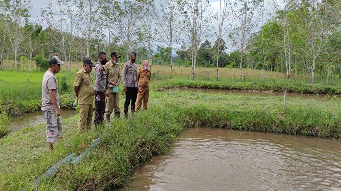 Budidaya Ikan Air Tawar Jadi Pilihan Program Kampung Tangguh di Sekadau Hulu