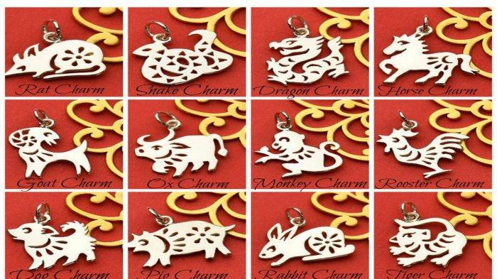 RAMALAN SHIO Besok Kamis 25 Juni 2020, Macan Merasa Diremehkan, Hubungan Shio Anjing Bikin Frustasi