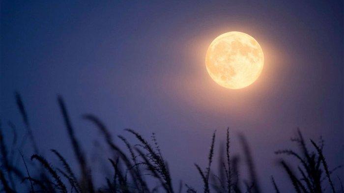 FENOMENA Langit Bulan Biru Malam Ini di Tengah Perayaan Halloween, Terjadi 2,5 Tahun Sekali