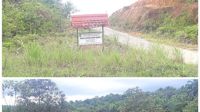 Alamat Sekolah untuk Penyandang Disabilitas di Ngabang
