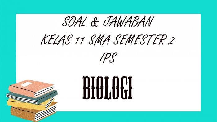 SOAL PAT Biologi Kelas 11 SMA / SMK Semester 2, Kunci Jawaban UKK / UAS Pilihan Ganda & Essay