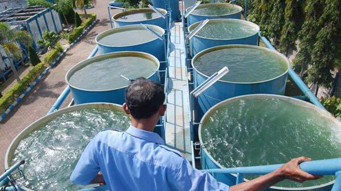 Tingkatkan Akses Air Minum, 6 KPBU SPAM Sudah Konstruksi, 10 Lainnya dalam Tahap Persiapan