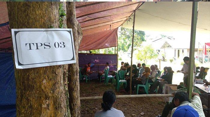 Prabowo Menang di TPS 03 Desa Pangkalan Buton, Tempat Citra Duani Mencoblos
