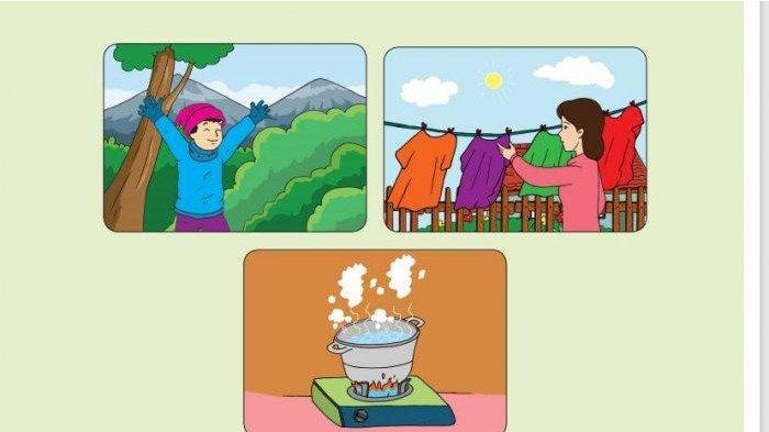 Kunci Jawaban Tema 6 Kelas 5 Sd Halaman 25 26 27 28 29 30 Subtema 1 Pembelajaran 3 Suhu Dan Kalor Tribun Pontianak