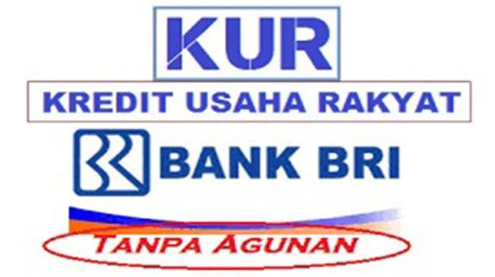 Cara Daftar Pinjaman Online 2021 KUR BRI Klik https://kur ...