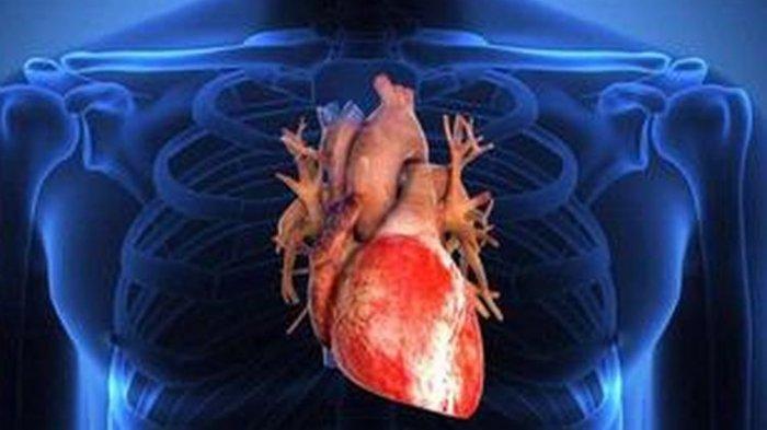TAK Bisa Sentuh Bagian Tubuh Ini, Artinya Jantung Anda Tak Sehat