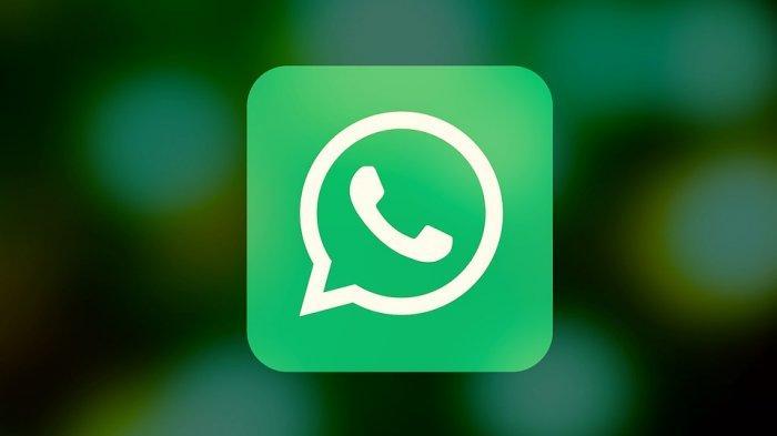 Trik Mudah Agar WhatsApp Gratis Tanpa Kuota Selamanya, Tinggal Download Aplikasi Ini