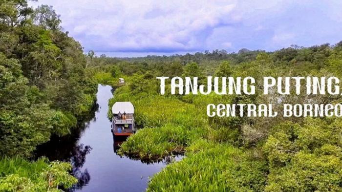 Taman Nasional Tanjung Puting Ajak Partisipasi Pilih Logo Terbaik