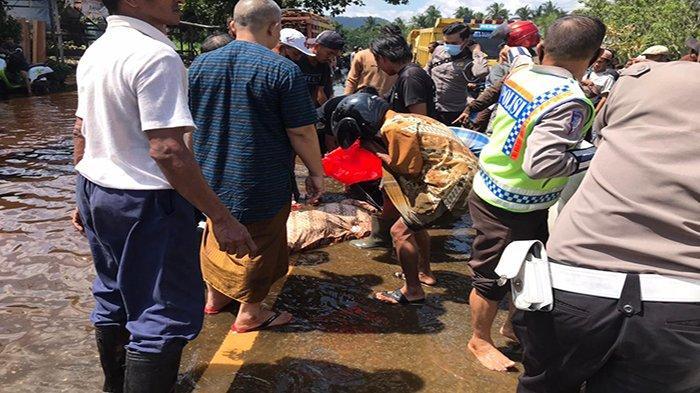 Telah terjadi kecelakaan lalu lintas di Jalan Raya Nusapati KM 45.500 Pontianak - Sungai Pinyuh, antara Sepeda Motor Honda Scoopy KB 3826 YX dengan Truck KB 9390 B, Sabtu 17 Juli 2021 sekitar pukul 10.40 WIB.