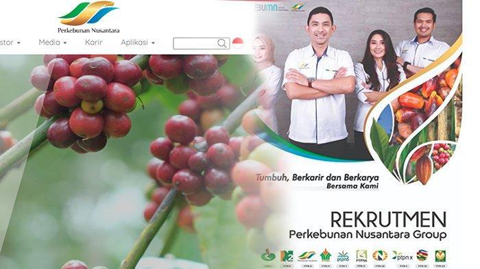 TERAKHIR Minggu 19 Juli 2020, Ayo Daftar Loker PTPN 2020   Lowongan Kerja BUMN Perkebunan Nusantara