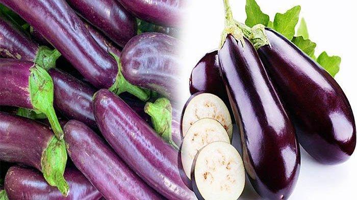 TERONG Obat Kolesterol dan Asam Urat, Ini 5 Manfaat Luar Biasa Terong untuk Kesehatan