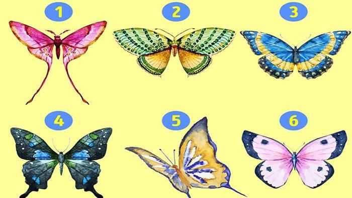 Tes Kepribadian - Kupu-kupu yang Kamu Pilih Ungkap Sisi Tersembunyi dari Kepribadianmu
