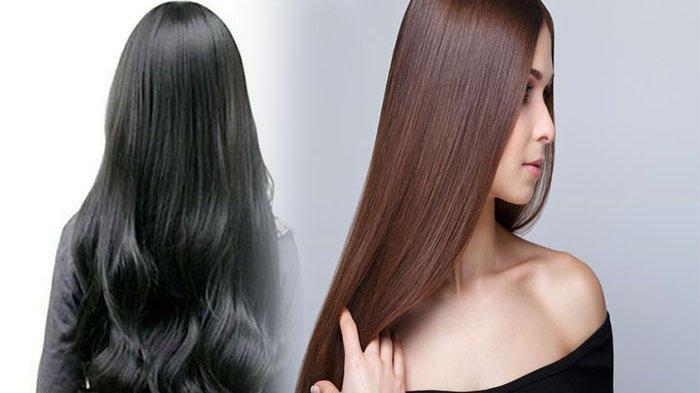 TIPS Agar Rambut Cepat Panjang ! Cara Alami Bikin Rambut Sehat