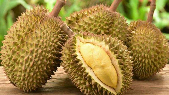 Tips Hilangkan Mabuk Makan Durian, Jika Tak Mempan dengan Air putih, Coba 2 Cara Jitu Ini!