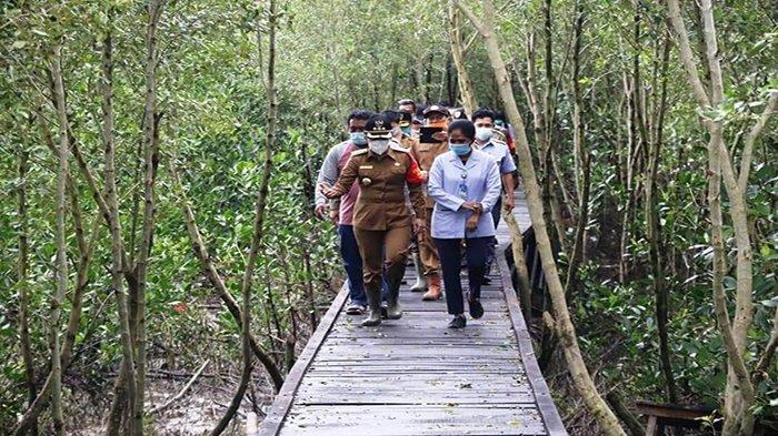Resmikan Tracking Mangrove Kelurahan Setapuk, Wali Kota Singkawang: Primadona Wisata Baru