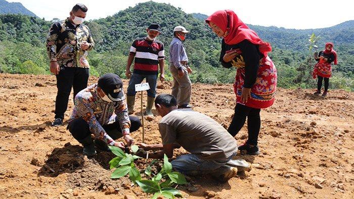 Pemkot Singkawang Sambut Baik Agrowisata Sagatani, Ini Kata Irwan