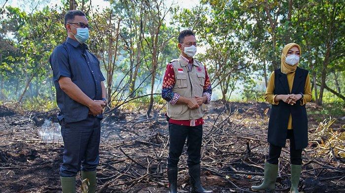 Duga Pembakar Hutan dan Lahan untuk Pengembangan Perumahan, Wali Kota Edi Kamtono Kaji Ulang Sanksi