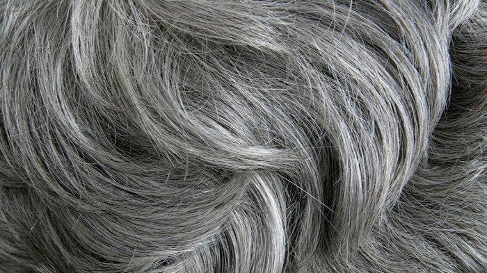 Waspadai Jika Rambut Sudah Beruban Meski Umur Masih Muda, Bisa Jadi Anda Derita Penyakit Mematikan