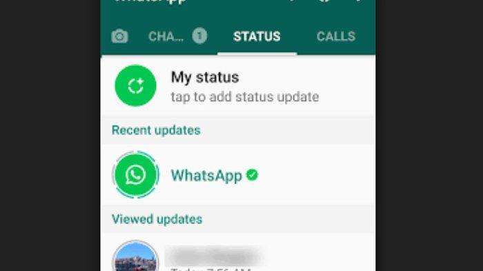 Kepoin Status WhatsApp Mantan Pacar Atau Gebetan Tanpa Ketahuan, Begini Caranya!