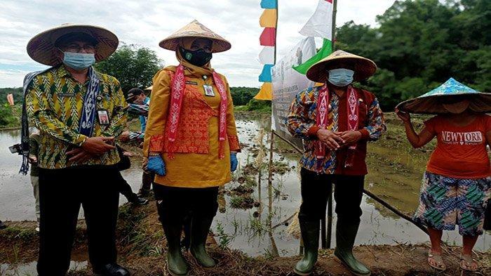 Desa Pentek Termasuk 15 Desa Wisata yang Termasuk Kedalam Penetapan SK Gubernur Kalbar Tahun 2021