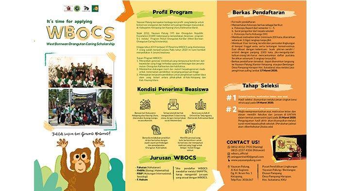 Yayasan Palung Siapkan 6 Beasiswa Peduli Orang Utan Kalimantan, Berikut Syarat dan Tahapannya!
