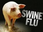 Flu-babi.jpg