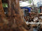 akar-kayu-kelurahan-pebatuan-kecamatan-tenayan-raya-pekanbaru.jpg