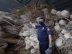 barang-bukti-ratusan-ton-rotan-ekspor-ilegal-hasil-tangkapan-3.jpg