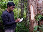botanis-yayasan-palung-andre-ronaldo-sdf-sd-sd.jpg