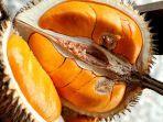 buah-pempakin-mirip-durian-ini-manfaat-buah-pampakin-atau-lai-untuk-kesehatan.jpg