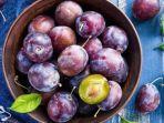 buah-plum-ilustrasi.jpg