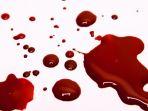 darah_20171018_145931.jpg