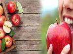 deretan-manfaat-buah-apel-untuk-ibu-hamil-mengurangi-risiko-cacat-lahir.jpg